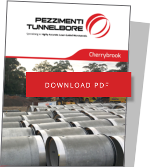 Download Cherrybrook Case Study